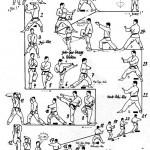embusen heian yondan tcms karate toulouse