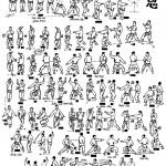 jion-tcms-karate