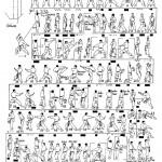 kanku dai tcms karate toulouse