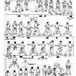 wankan-tcms-karate-toulouse