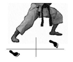 positions-dachi-shizei-fudo-dachi