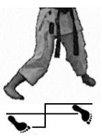 positions-dachi-shizei-hangetsu-dachi