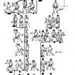 embusen-heian-shodan-tcms-karate-toulouse