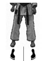 positions-dachi-shizei-heiko-dachi