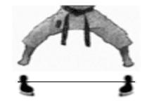 positions-dachi-shizei-kiba-dachi