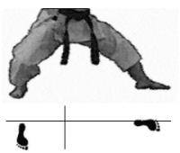 positions-dachi-shizei-kokutsu-dachi
