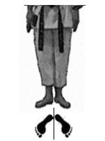 positions-dachi-shizei-musubi-dachi