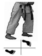 positions-dachi-shizei-moto-dachi