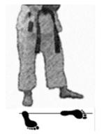 positions-dachi-shizei-reinoji-dachi