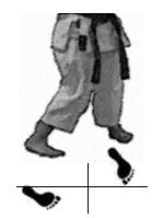 positions-dachi-shizei-sanchin-dachi