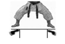 positions-dachi-shizei-shiko-dachi