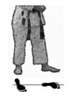 positions-dachi-shizei-teiji-dachi