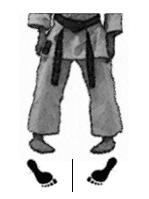 positions-dachi-shizei-uchi-hachiji-dachi