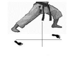 positions-dachi-shizei-zenkutsu-dachi