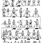 tekki nidan tcms karate toulouse