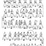 tekki sandan tcms karate toulouse