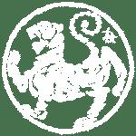 tigre blanc shotokan tcms karate toulouse