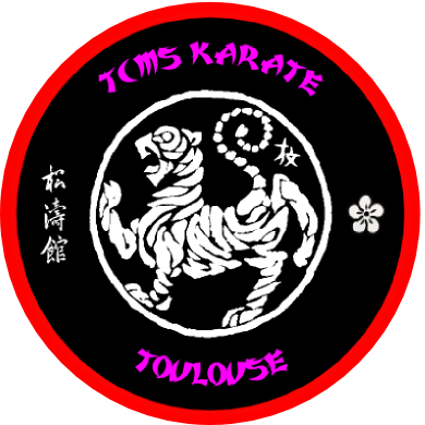 reglement-interieur-tcms-karate-toulouse
