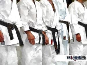 waza-ceinture-noire-tcms-karate-toulouse